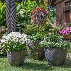 Produktbild Blumenkasten Standard60 cm anthrazit