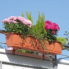 """Casaya Bewässerungs-Blumenkasten """"Aqua Green"""""""
