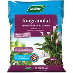 westland Tongranulat